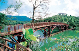 Pamper Yourself in Shenzhen: East Overseas Chinese Town