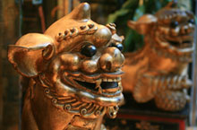 A Guide to the Best Markets in Chengdu
