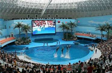 Chengdu Polar Ocean World Finally Unveiled to Public
